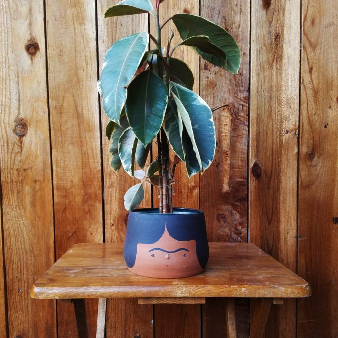 funny plant pot